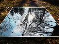 Himmelspiegelbilder_Natur_009